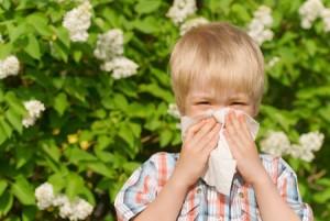 LUS alergia badania alergiczne alergeny